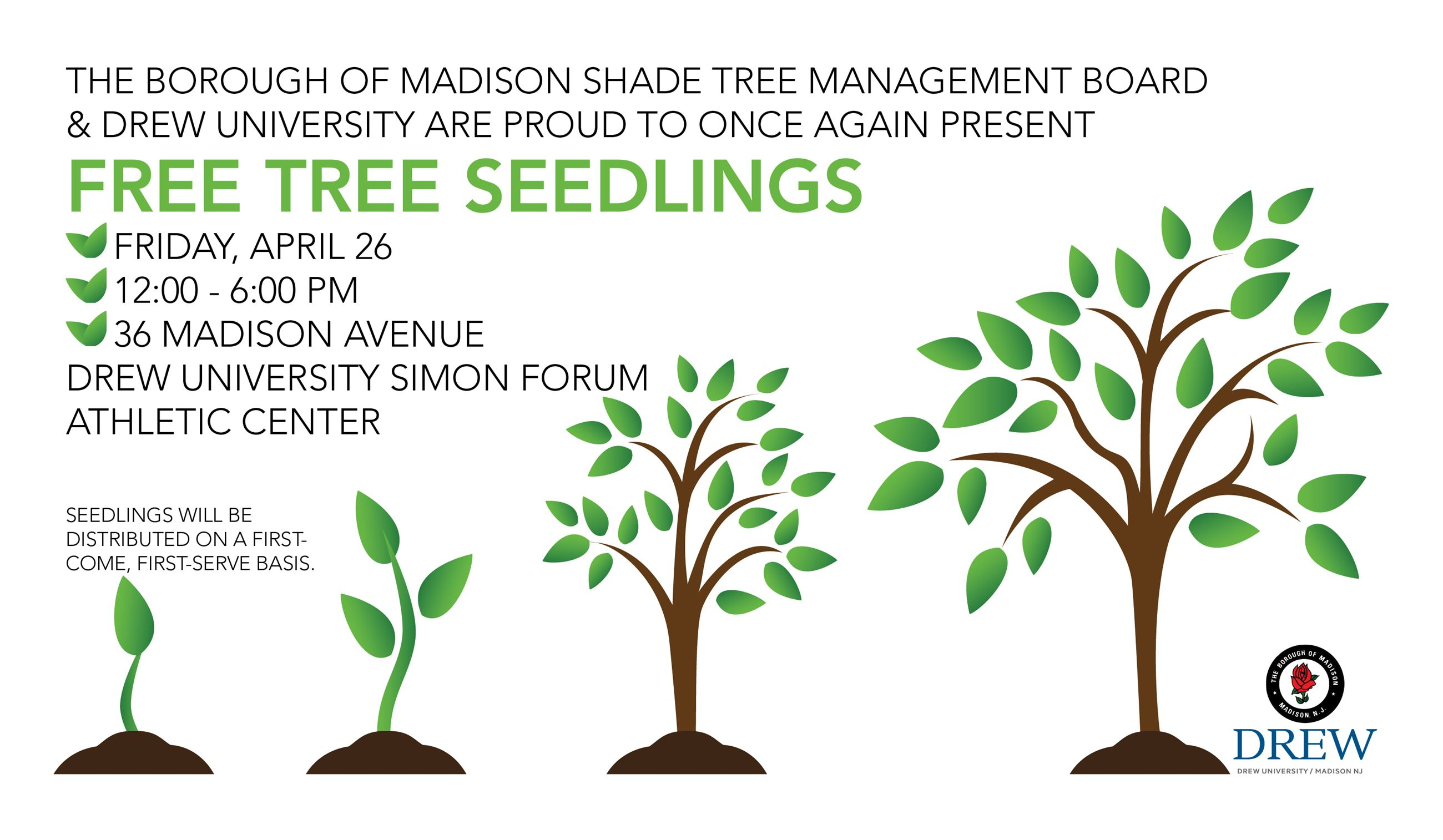 Free seedlings on 4/26